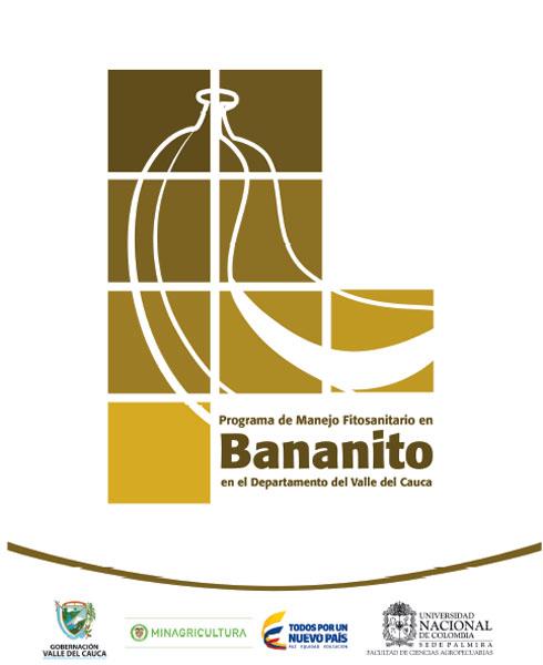 Programa de manejo fitosanitario en bananito en el departamento del Valle del Cauca