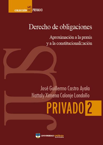 Derecho de obligaciones. Aproximación a la praxis  y a la constitucionalización
