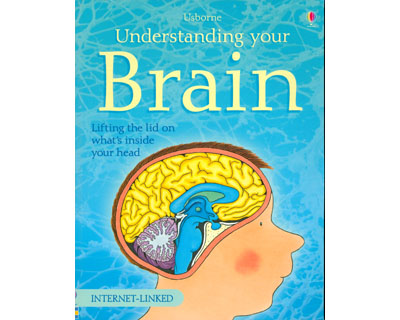 Understanding your brain. Lifting the lid on what's inside your head