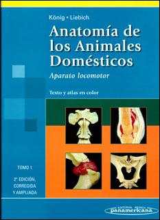 Anatomía de los animales domésticos. Aparato locomotor. Tomo 1