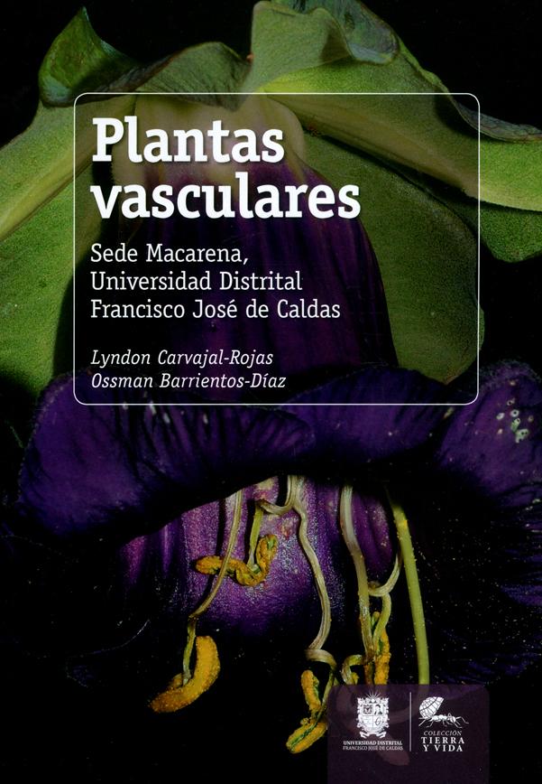 Plantas vasculares. Sede macarena, Universidad Distrital Francisco José de Caldas