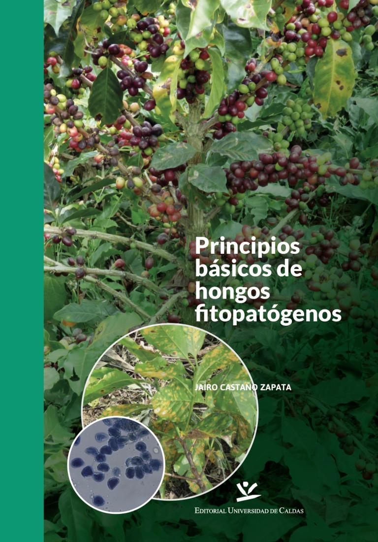 Principios básicos de hongos fitopatógenos