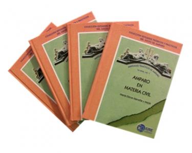 Manuales temáticos de Amparo. Primera serie