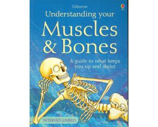 Understanding your muscles & bones. A guide to what keeps you up and about