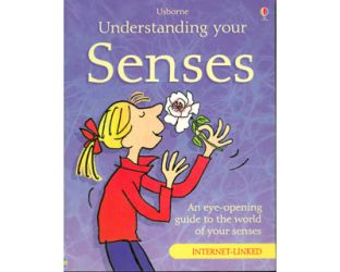 Understanding your senses. An eye-opening guide to the world of your senses