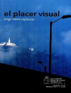 El placer visual
