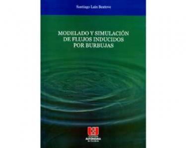 Modelado y simulación de flujos inducidos por burbujas