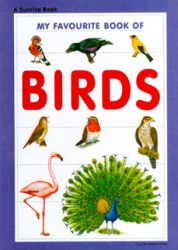 My favourite book of birds (Tapa dura)