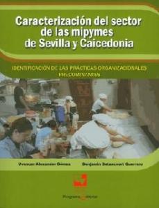 Caracterización del sector de las mipymes de Sevilla y Caicedonia. Identificación de las prácticas organizacionales predominantes