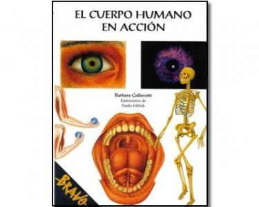 El cuerpo humano en acción
