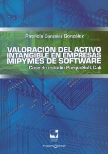 Valoración del activo intangible en empresas Mipymes y de software. Caso de estudio ParqueSoft Cali