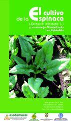 El cultivo de la espinaca y su manejo fitosanitario en Colombia