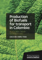 Production of biofuels for transport in Colombia. An assessment through sustainability tools