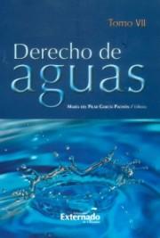 Derecho de aguas Tomo VII