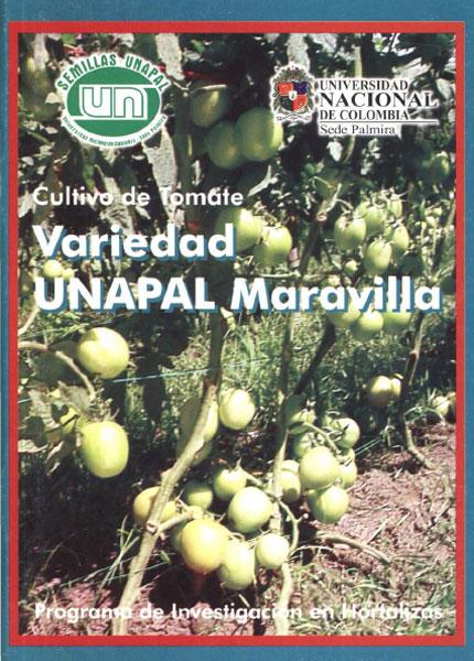 Cultivo de tomate. Variedad UNAPAL Maravilla