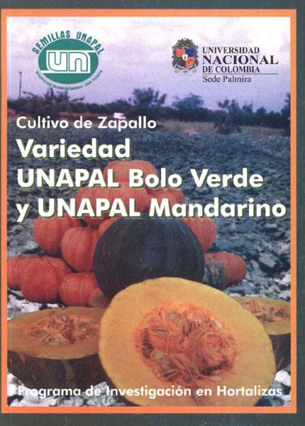 Cultivo de zapallo. Variedad UNAPAL bolo verde y UNAPAL Mandarino