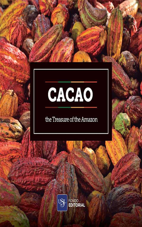 Cacao. The treasure of the Amazon
