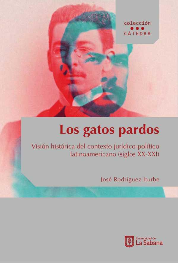 Los gatos pardos. Visión histórica del contexto jurídico-político latinoamericano (siglos XX- XXI)