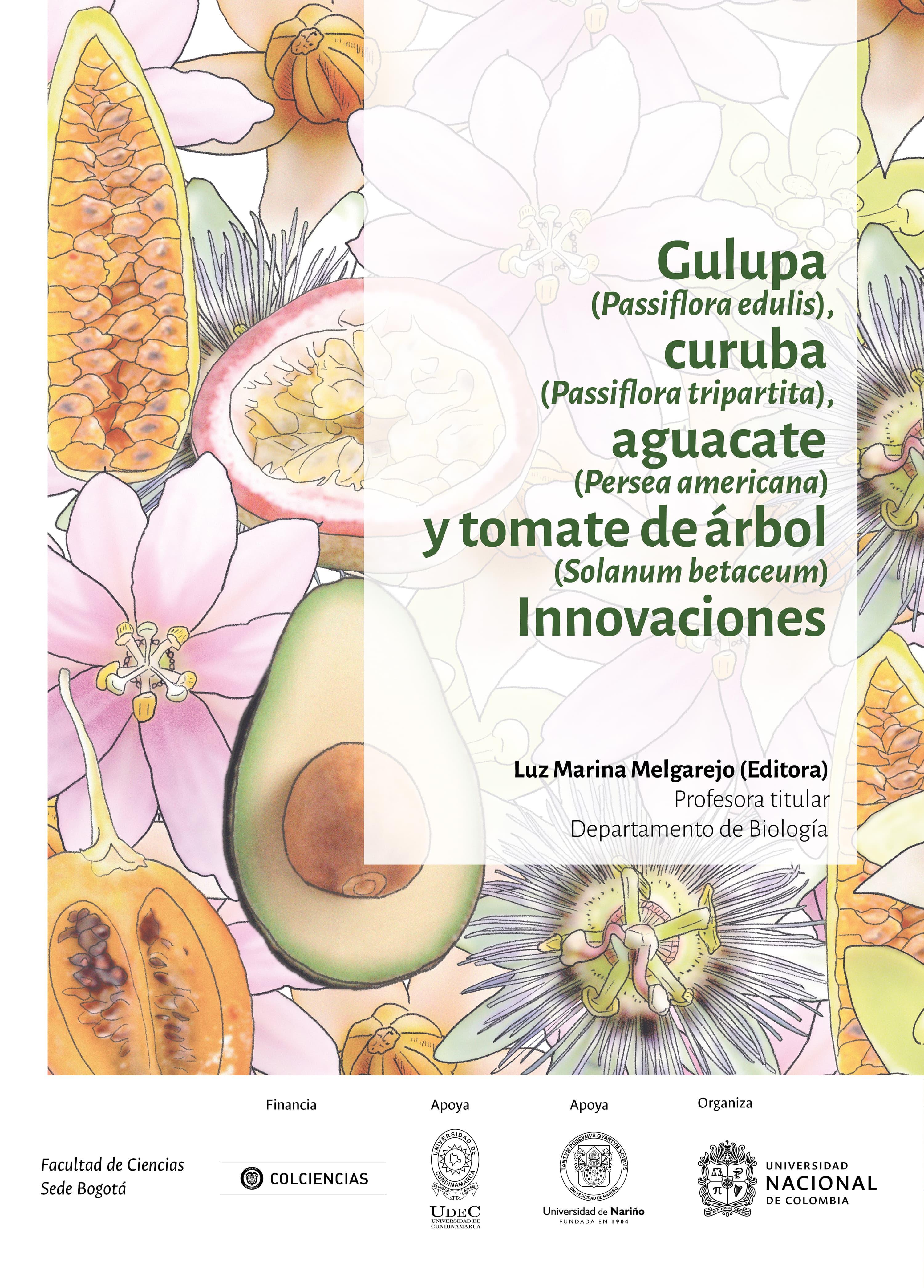 Gulupa (Passiflora edulis), curuba (Passiflora tripartita), aguacate (Persea americana) y tomate de árbol (Solanum betaceum) Innovaciones