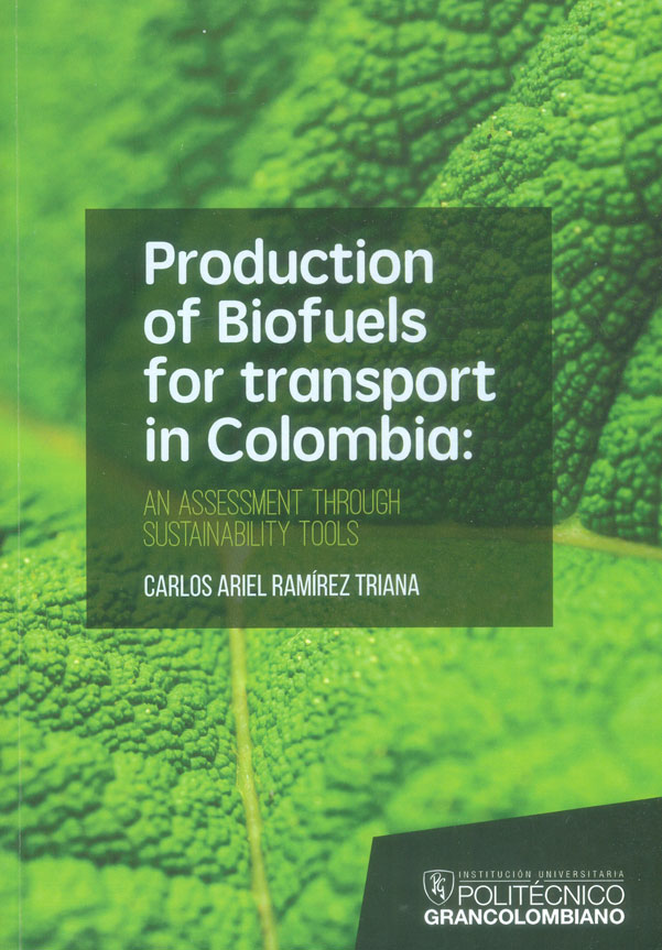 Production of biofuels for tansport in Colombia : An assessment through sustainability tools