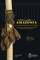 Política y poder en la Amazonia. Estrategias de los pueblos indígenas en los nuevos escenarios de los países andinos